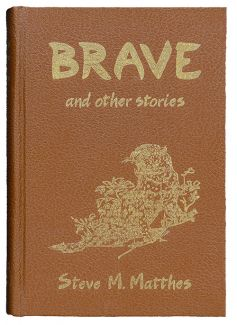 Brave and Other Stories by Steve M. Matthes