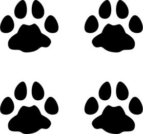 Cougar Tracks Decal