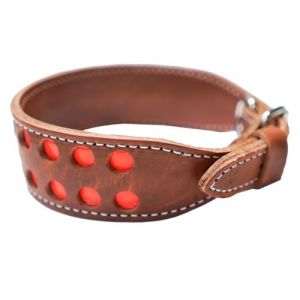 23 inch Tapered Reflecto Leather Collar