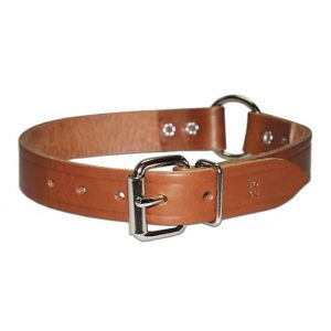 Leather Bully O-Ring Collar