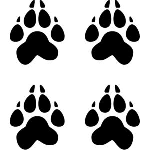 Dog Tracks Vinyl Decal