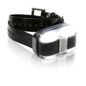 Dogtra EDGE Additional Collar