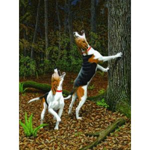 Music to my Ears - Treeing Walker Hound Print - by Robert W Hickman