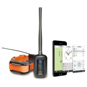Dogtra Pathfinder GPS Track + Train E-Collar and Handheld
