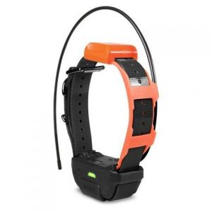 Dogtra Pathfinder TRX Additional GPS-Only Collar