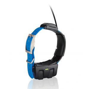 Refurbished Garmin DC50 Collar