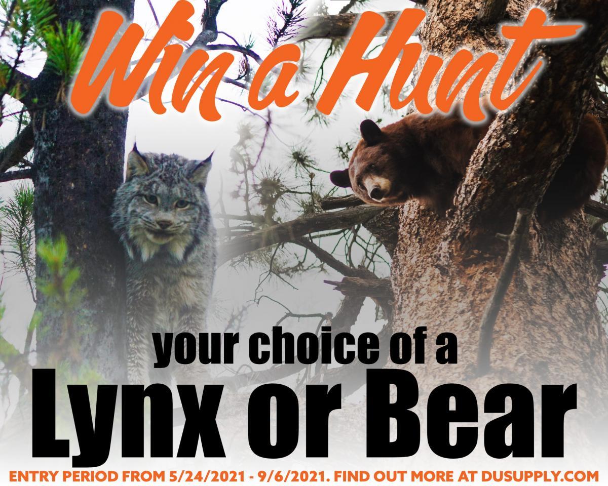 Win a Lynx or Bear Hunt!